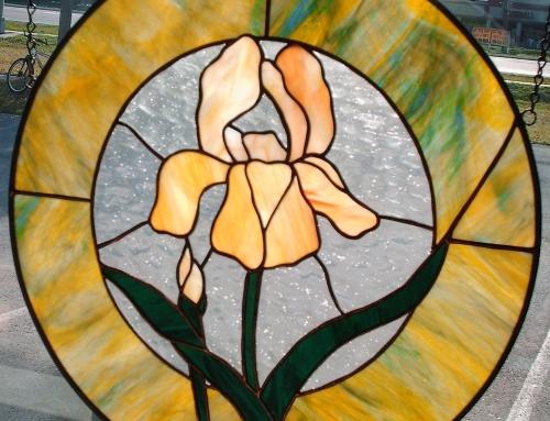 Iris Circle